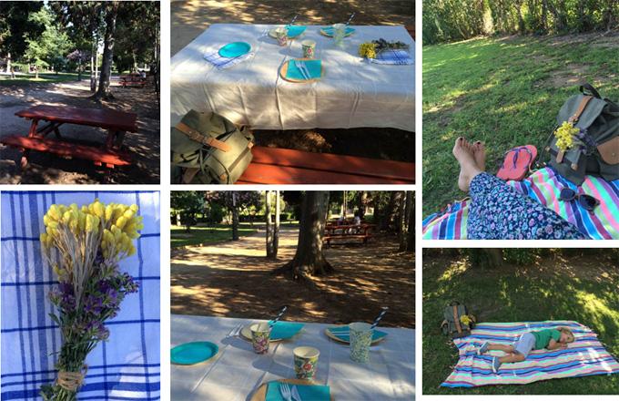 picnic + siesta copy