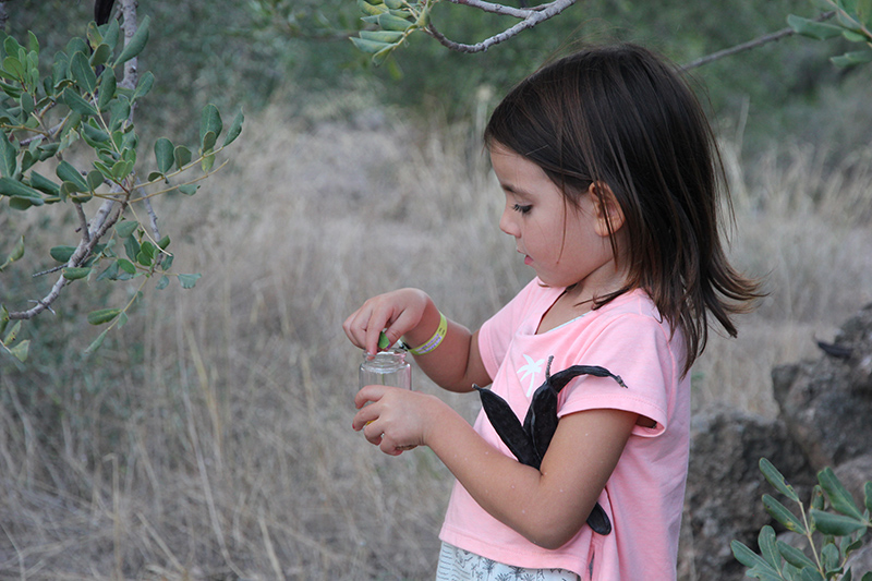 Laila recoje hojas y algarroba