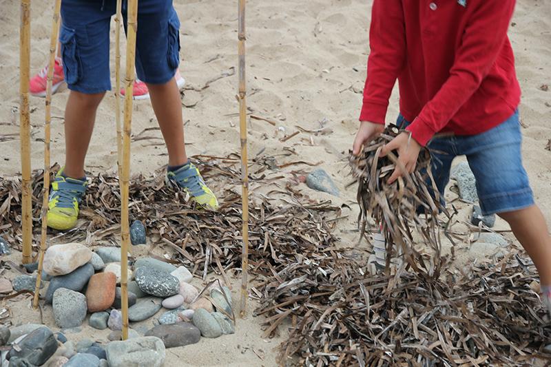 Actividad en la playa de la pixerota