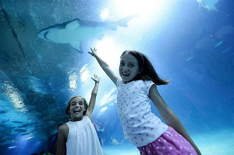 Op&Kids-oceanografic