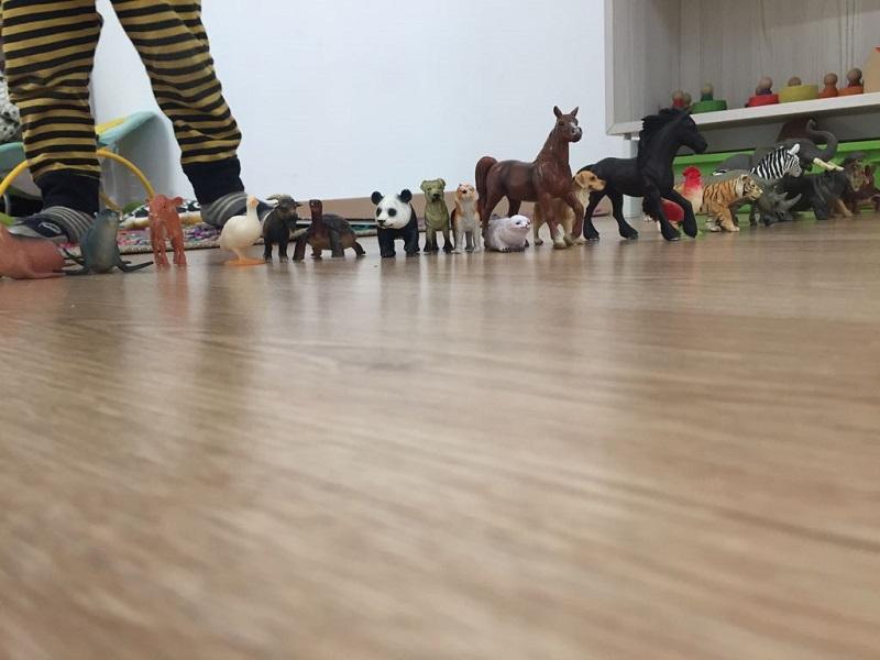 La_Cabana_animals