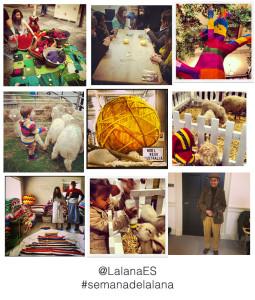 semana de la lana en el mundo