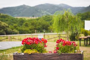 Casinas rurales Asturias