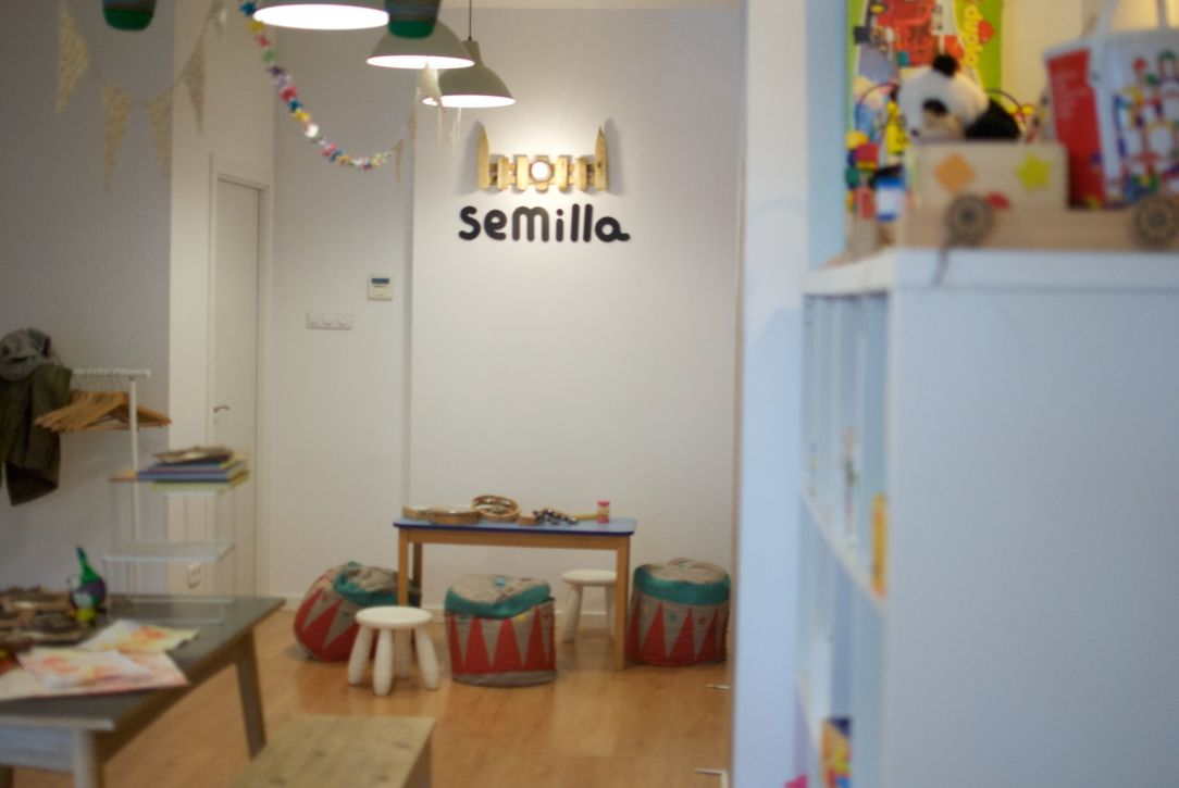 semilla-6
