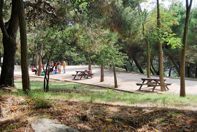 Caseta Migdia mesas picnic La Caseta del Migdia: barbacoa, bosque y vistas al mar sin salir de Barcelona
