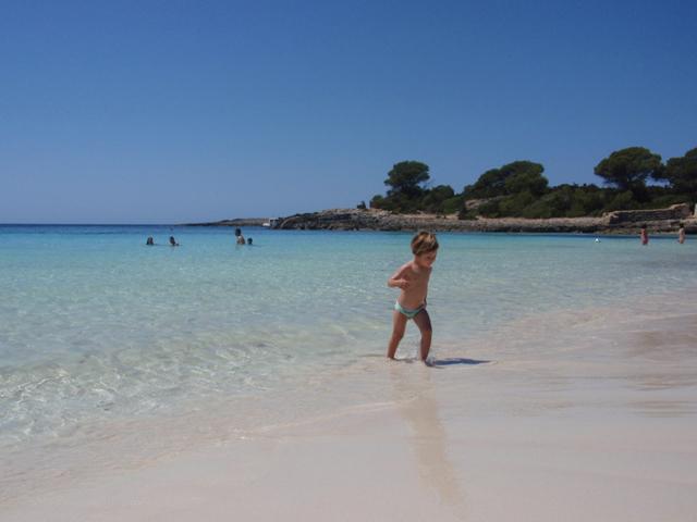 Playa de Son Saura