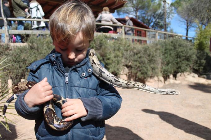 nino serpiente