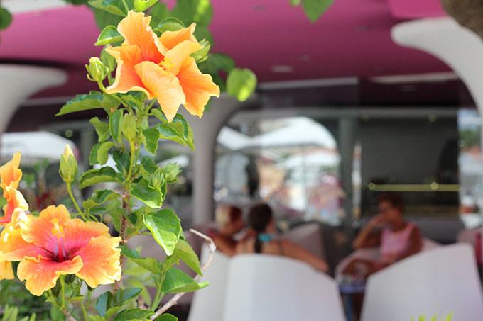 flores en el restaurante