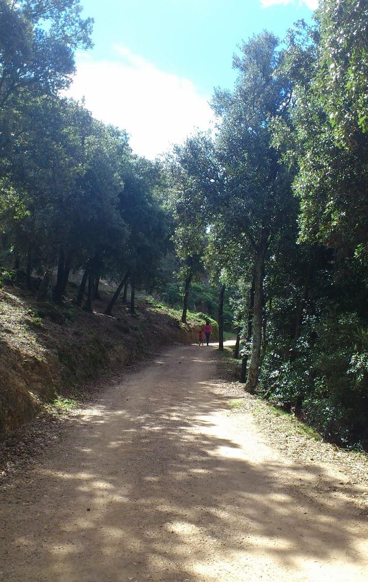 pasear-montseny