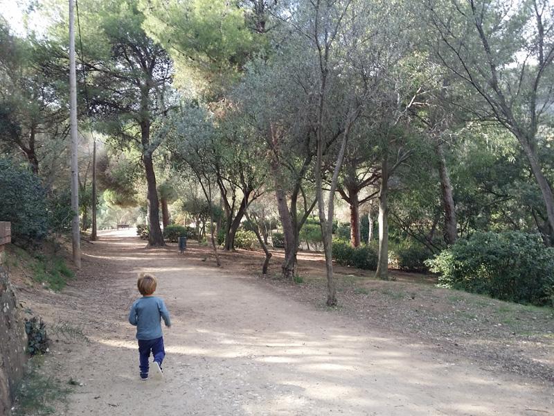 bosque parque oreneta