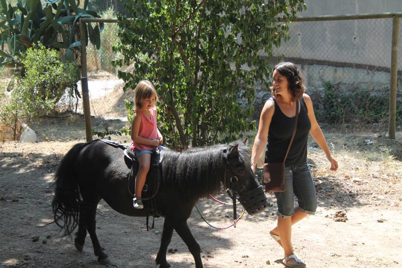 montar en poni parc oreneta