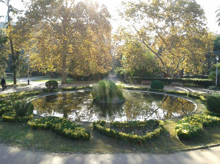 estanque santa amelia