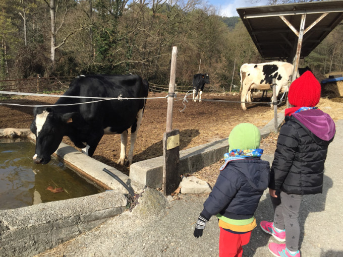 casa rural animales la batllia