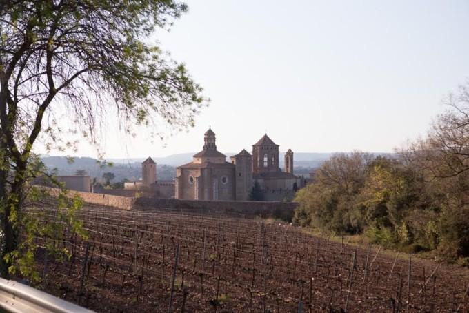 muntanyes-de-prades-mammalovescat-monasterio
