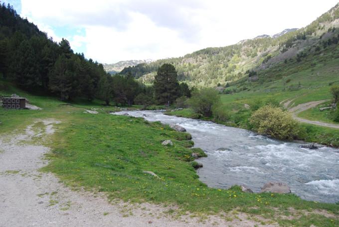 montana-con-ninos