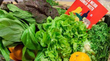 cesta_alimentoscalidad